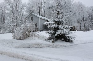 Cold_weather_home